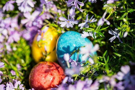 Marietta Easter Egg Hunt